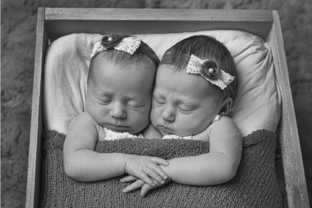 Twin newborn baby girls photographer
