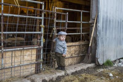 Editorial Photography in Cambridge Ontario Farms