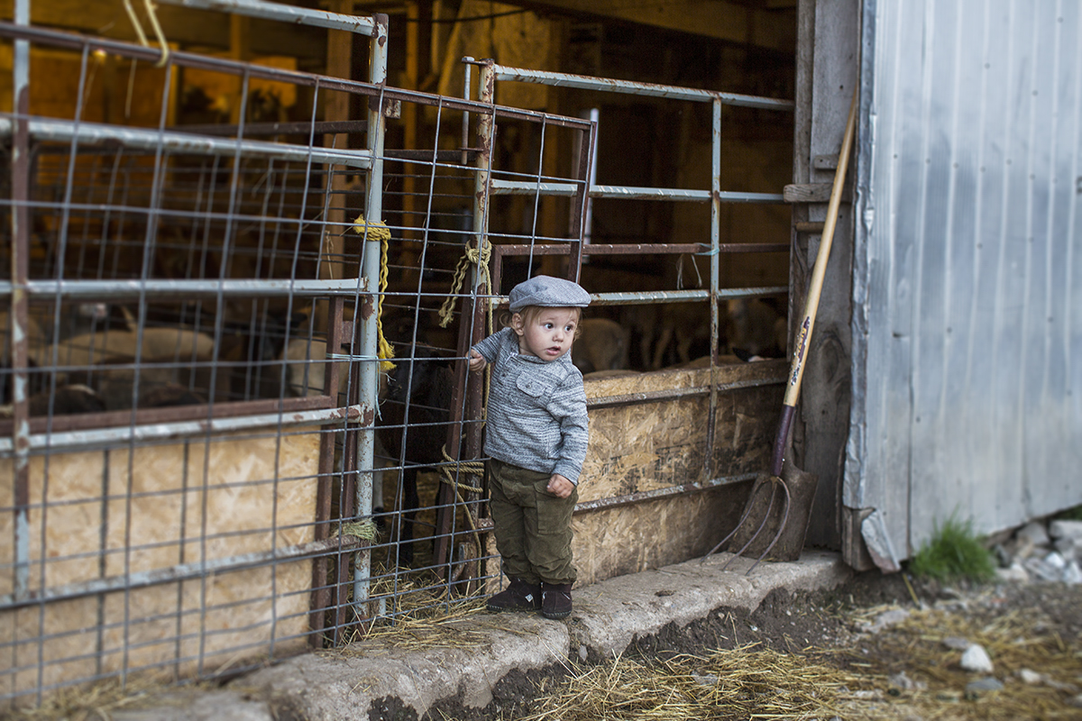 Editorial Photography in Cambridge Ontario Farms