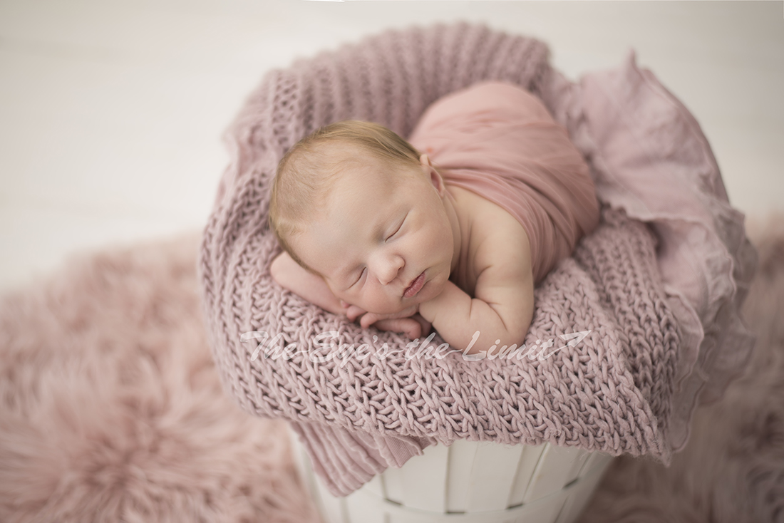 Pretty in pink newborn set up