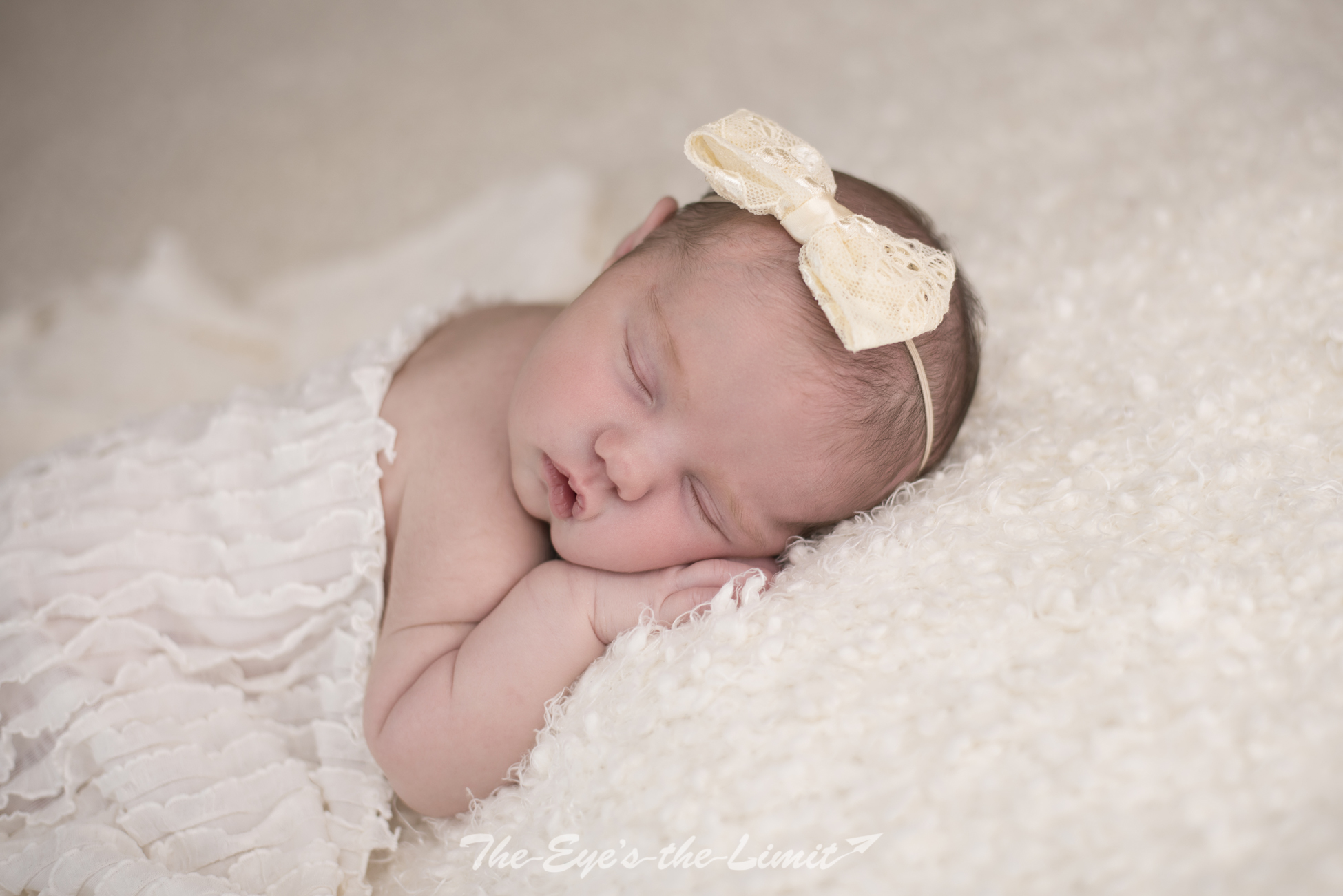 Cambridge Ontario Newborn Photographer